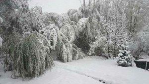 Ağrı'da okullara kar tatili