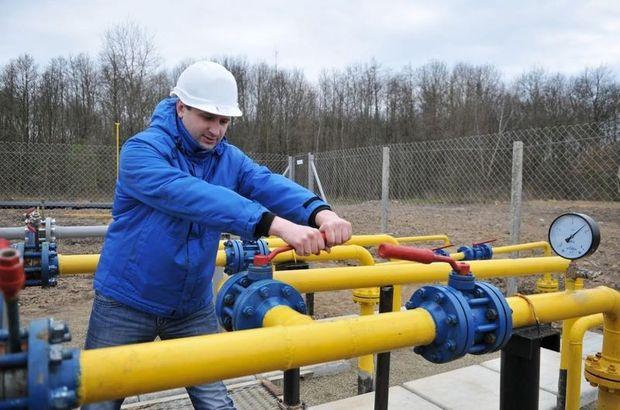 doğalgaz dağıtım düzenlemesi