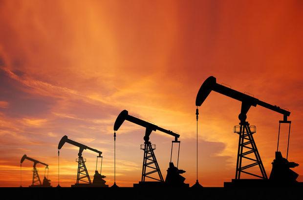 petrol sektörü