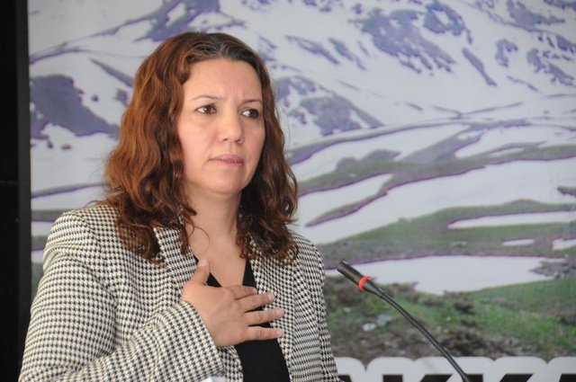 HDP'li milletvekillerinin suç dosyaları