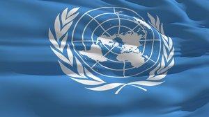 BM Uluslararası Hukuk Komisyonu'na Türk akademisyen seçildi