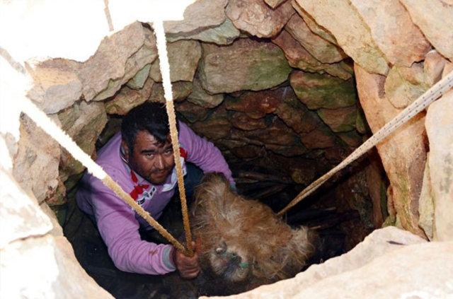 Antalya'da Söğle peyniri 2 ay kar dolu kuyuda bekletilerek yapılıyor