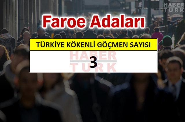 En fazla Türk hangi ülkede?