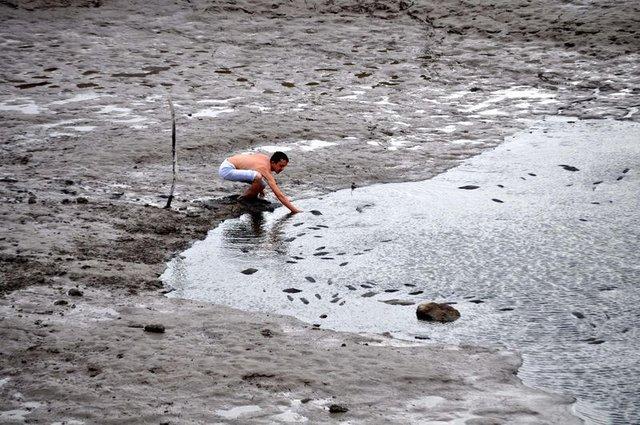Gölet kurudu, balıklar telef oldu