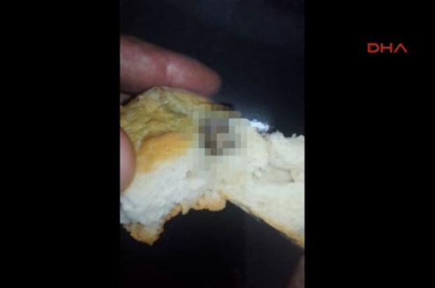 Esenler fare ekmek