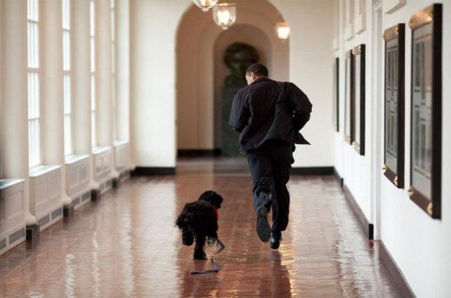 ABD Başkanı Barack Obama'nın fotoğrafçısı tarafından çekilen 55 kare
