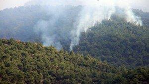 Tokat'taki orman yangınına uçakla müdahale ediliyor