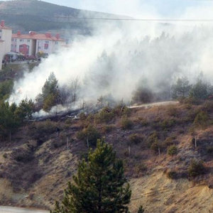 Ateşle oynayan çocuklar ormanı yaktı