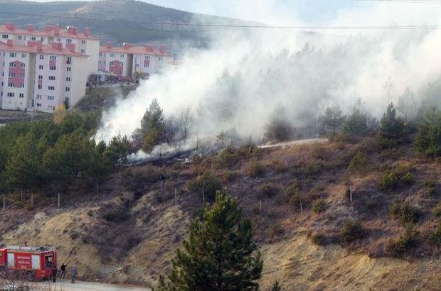 Kastamonu Orman yangını