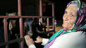 Keçileri çalınınca üzüntüden, bulununca sevinçten ağladı