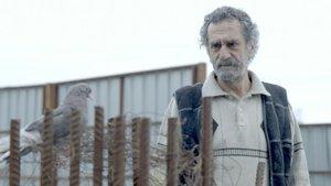 'Babamın Kanatları' Boğaziçi Film Festivali'nde