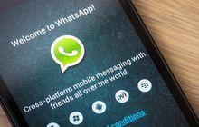 WhatsApp, görüntülü arama özelliğini resmi olarak duyurdu!