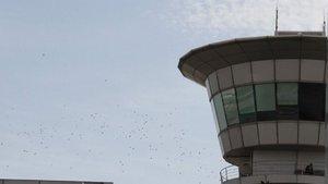İstanbul Atatürk Havalimanı'nda hareketli anlar