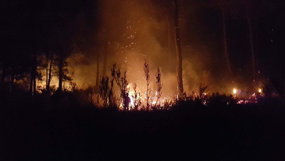 antalya Manavgat orman yangını