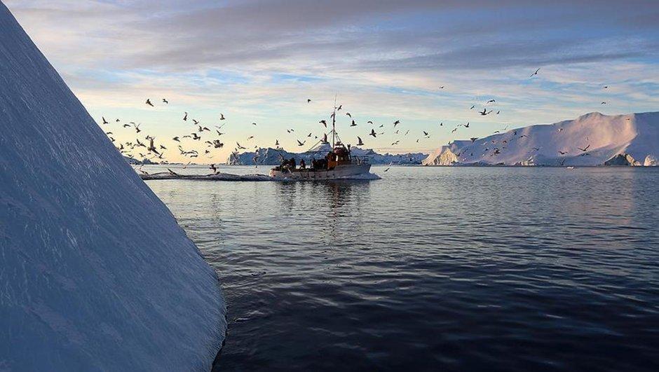 Gröndland ABD Danimarka kimyasal atık