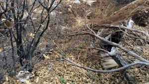 Bingöl'de PKK'ya ait, biri 11 odalı 13 sığınak ve 4 mevzi bulundu