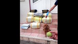 Adana'da yaşayan karı koca uyuşturucu madde bulundurmaktan tutuklandı