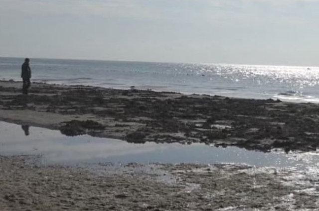 Tekirdağ'da deniz 15 metre çekildi