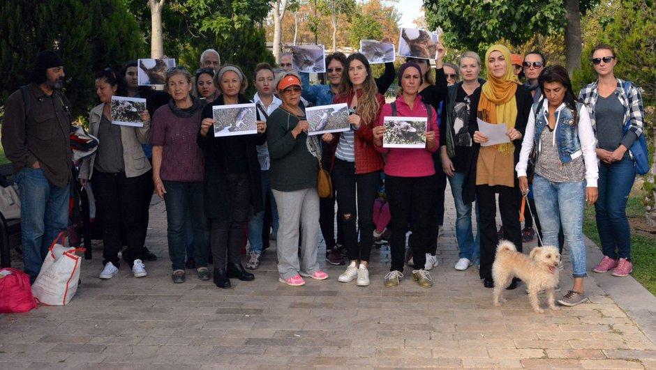 Antalya kedi katliamı protesto