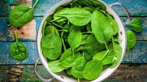 Paketlenmiş yeşilliklerde 'salmonella' riski!