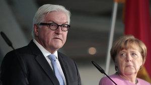 Almanya Dışişleri Bakanı Steinmeier'den Suriye ve Rusya'ya çağrı