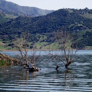 Baraj suyu azaldı, tehlike kapıda!