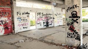 Antalya'da 13 kedinin ölümünde 'satanizm' iddiası