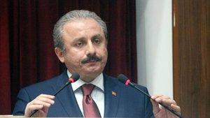 Mustafa Şentop referandum için tarih verdi