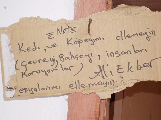 Aydın'da Ali Ekber Kurtoğlu isimli vatandaşın hayvan sevgisi görenleri duygulandırıyor