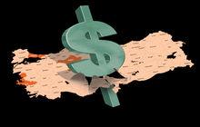 Vatandaş her 100 liralik tasarrufun 55 tl'sini döviz hesabında tutuyor