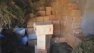 PKK'ya Şırnak'ta ağır darbe