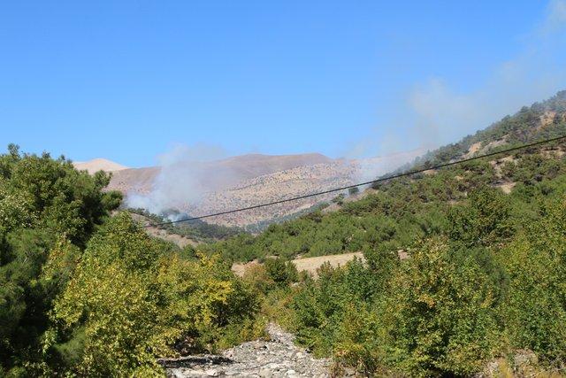 Terör örgütü PKK'ya bir ayda ağır darbe vuruldu