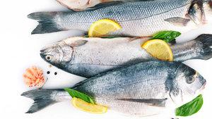 Balık pulunun faydası var mı?