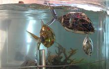 Çinli bilim insanları robot balık geliştirdi
