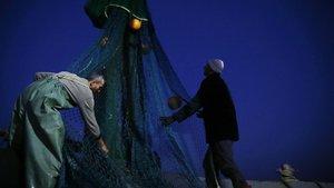 Fırtına dinince balık fiyatları düştü