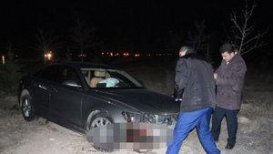 Meram Belediye Başkanı Fatma Toru'nun aracı domuza çarptı