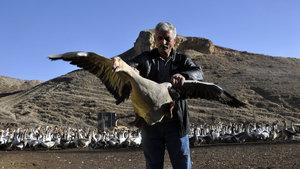Mehmet Yener hediyeyle kaz çiftliği kurdu