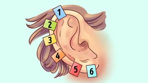 Bakın kulaklarınız sizin hakkınızda ne söylüyor?