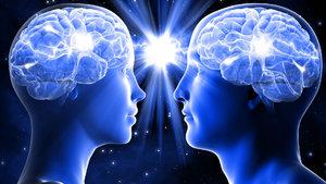 Kadın ile erkek arasındaki bilimsel farklar!