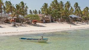 THY ile Zanzibar için 50 neden
