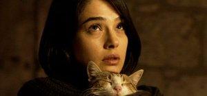 'Tereddüt' filmine Hindistan'dan iki ödül