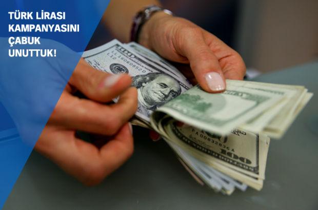 bilanço makyajı Türk Lirası Faiz dolar mevduatı