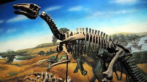 Bilim insanlarından dinozorlarla ilgili yeni keşif