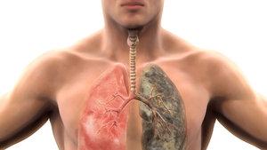Sigara, eroin ve kokainden sekiz kat fazla bağımlılık yapıyor!