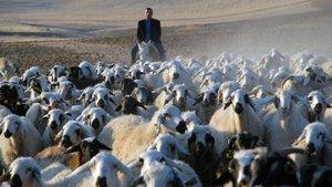 Çorum Valisi Kılıç: Afganistan ve Özbekistan'dan çoban ithal edeceğiz