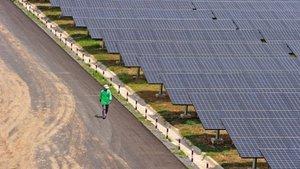 Mersin'e dünyanın en büyük 5'inci güneş enerjisi santrali kurulacak