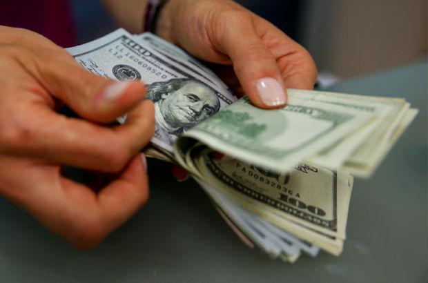 Özel sektör  döviz borçları