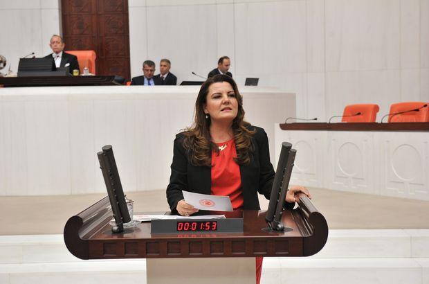 CHP'li Hürriyet: Anayasa geçerse başımıza geleceklerin fotoğrafı