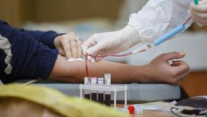 Kanın hayat veren 'zorlu yolculuğu'