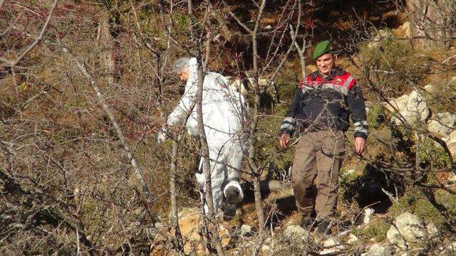 Antalya'da bir adam hayvanlar tarafından parçalandı